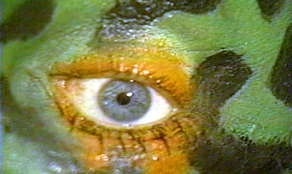 Frogskin, 1991
